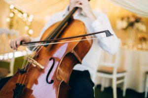 riviera organisation violin