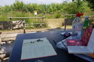 share-riviera-LingoLangue2