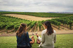 share-riviera-bandol-wine-tours