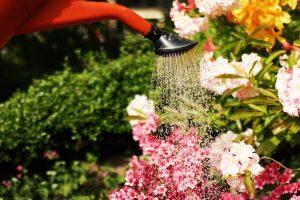 share-riviera-gardening